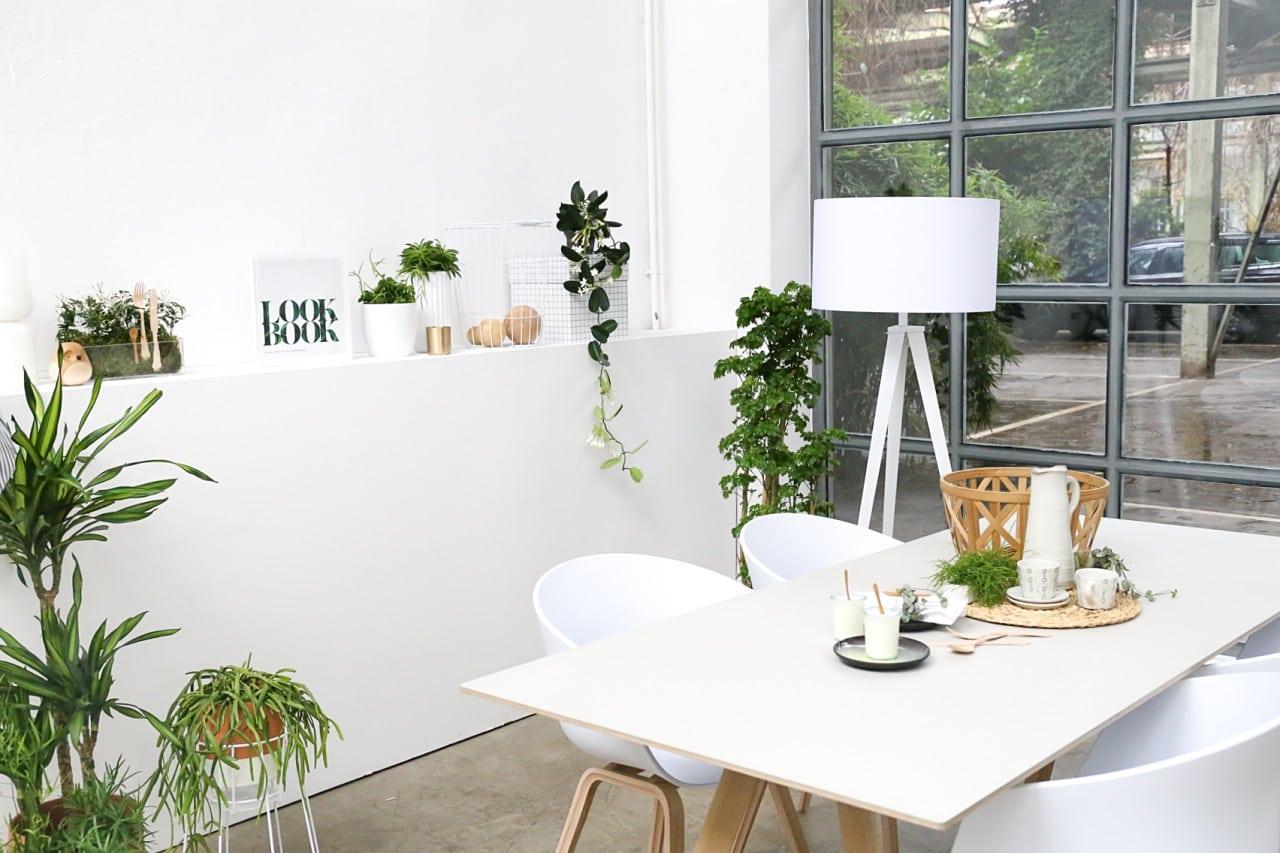 desbelleschoses-blog-köln-event-pflanzenfreude-workshop-interior-connect-the-story 1