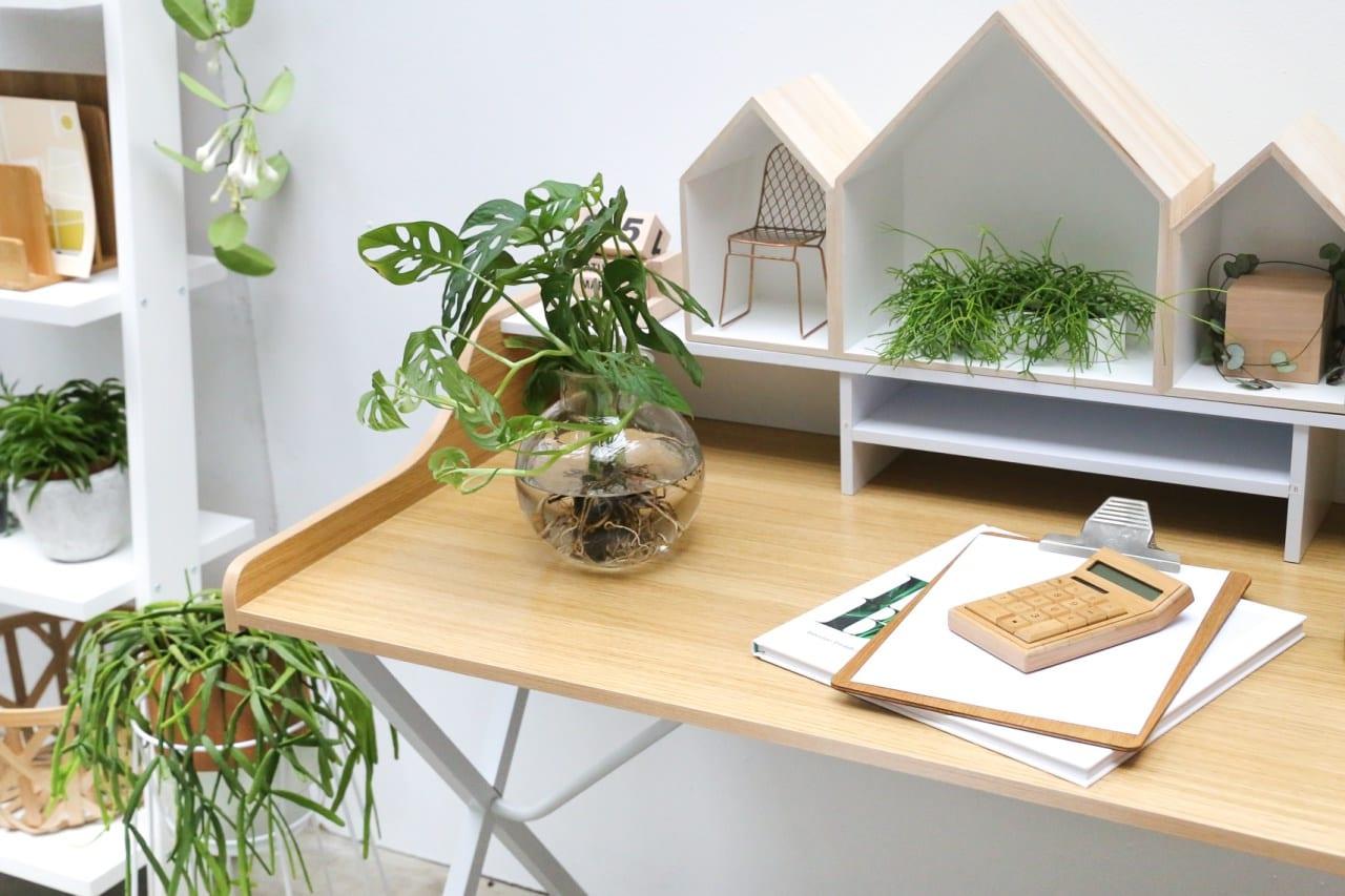 desbelleschoses-blog-köln-event-pflanzenfreude-workshop-interior-connect-the-story 5