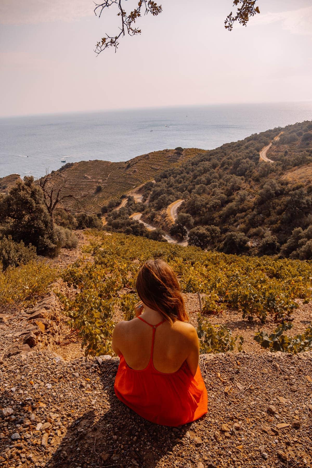Banyuls Sur Mer - Top 5 Ausflugsziele im Roussillon in Südfrankreich