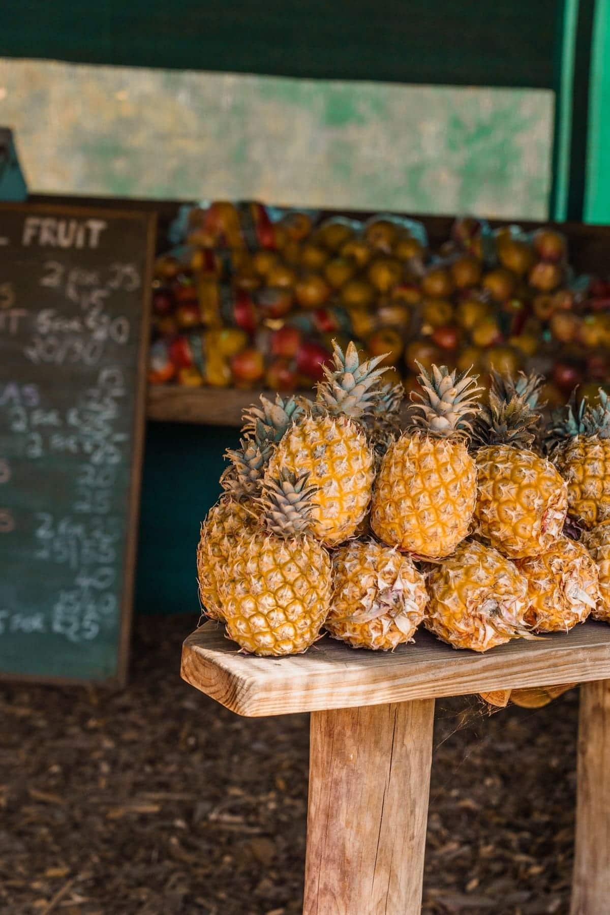 Garden Route Touren: Entspannung und Kulinarik in Knysna